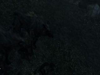 Ambushed By Wolfs