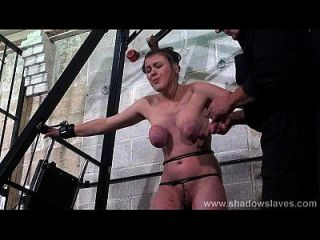 Taylor Hearts Extreme Tit Tortures And Gagged Blonde Teen