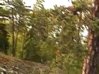 Outdoor Sex Video: Couple Fucking