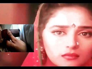 True Love On Innocent Queen Madhuri Dixit