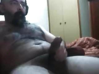 Hot Hairy Bear 29917